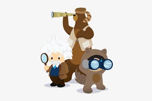 Understand Basic Salesforce Platform Coding Concepts