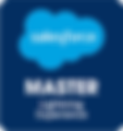 Salesforce_Master_Badge_Lightning_Experi
