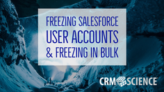 Freezing Salesforce User Accounts & Freezing in Bulk