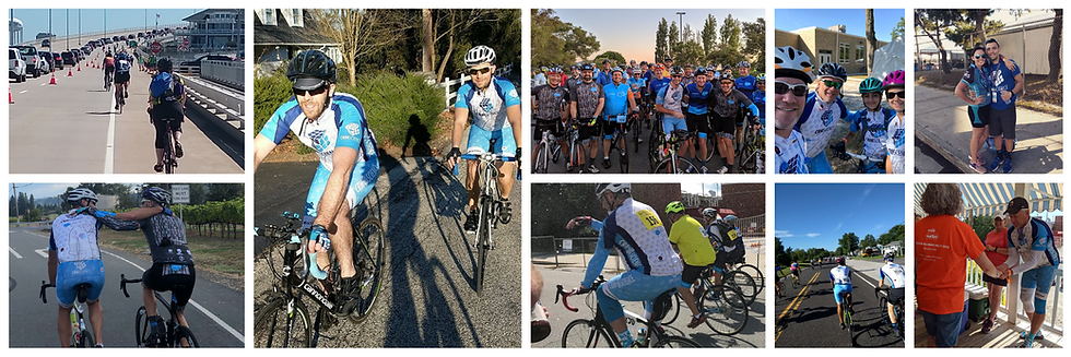 Bike MS Banner Collage.png