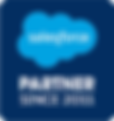 Salesforce_Partner_Badge_Since_2011_RGB.