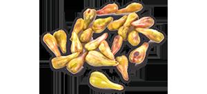 naara-grape-seed-300.png