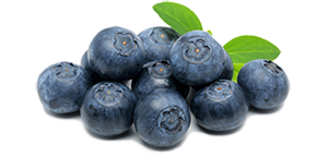 naara-blueberry-300.png