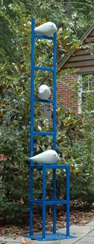 Birds on a Roll
