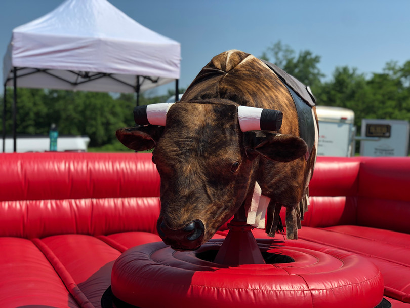 PBR Mechanical Bull from By the Horns Mechanical Bull Rental Delaware Pennsylvania Maryland