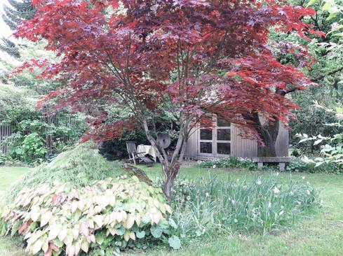 Gartender Dichter und Denker