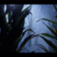 labyrinthe nuit.jpg