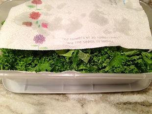 everydayhappyfoods|keeping greens fresher