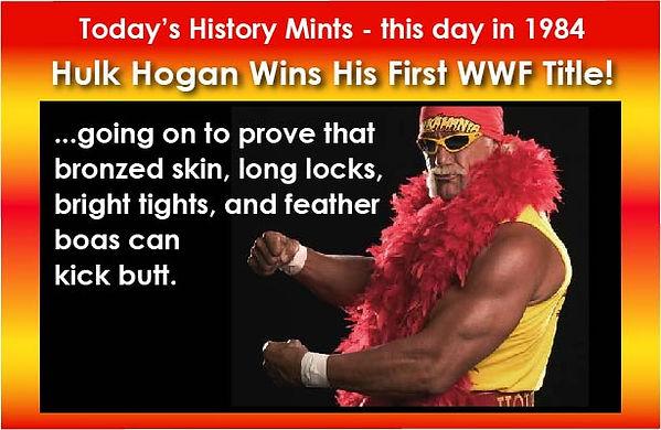 Hulk Hogan FB Meme.jpg
