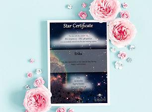 star registration4.jpg