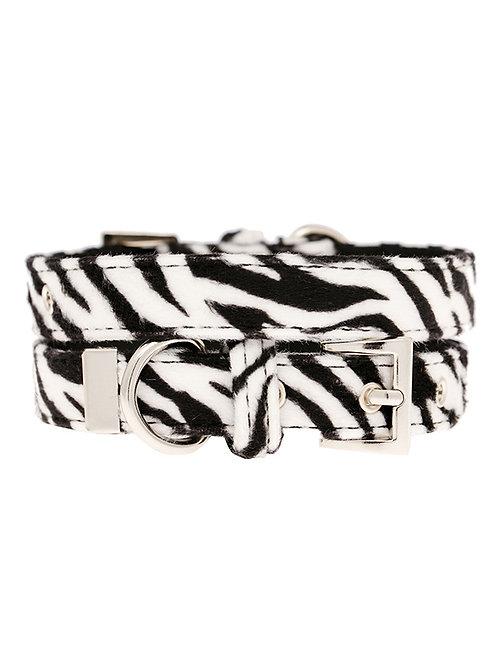 Zebra Print Collar