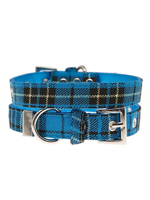 Blue Tartan Collar