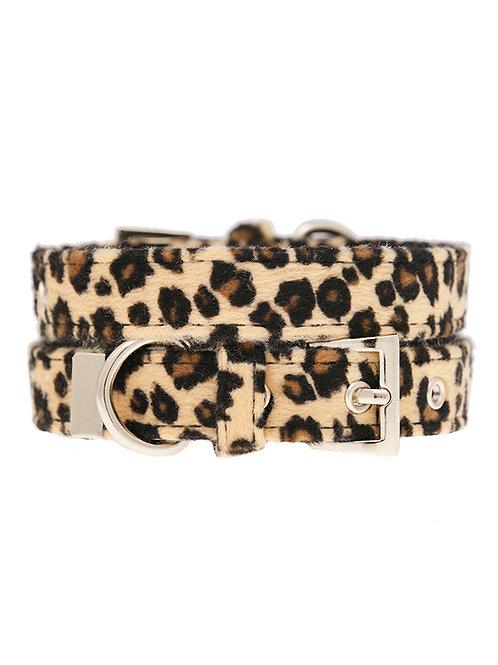 Leopard Print Collar