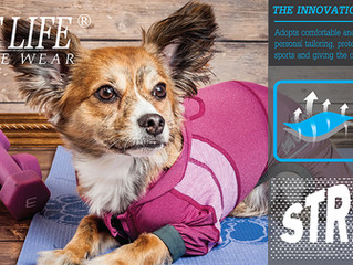 Pet Life launches First-Ever Active-Wear Collection
