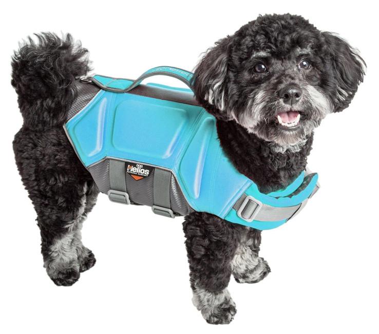 Black Dog Wearing a Light Blue Dog Helios Life Jacket