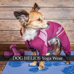 helios dog yoga fitness clothes