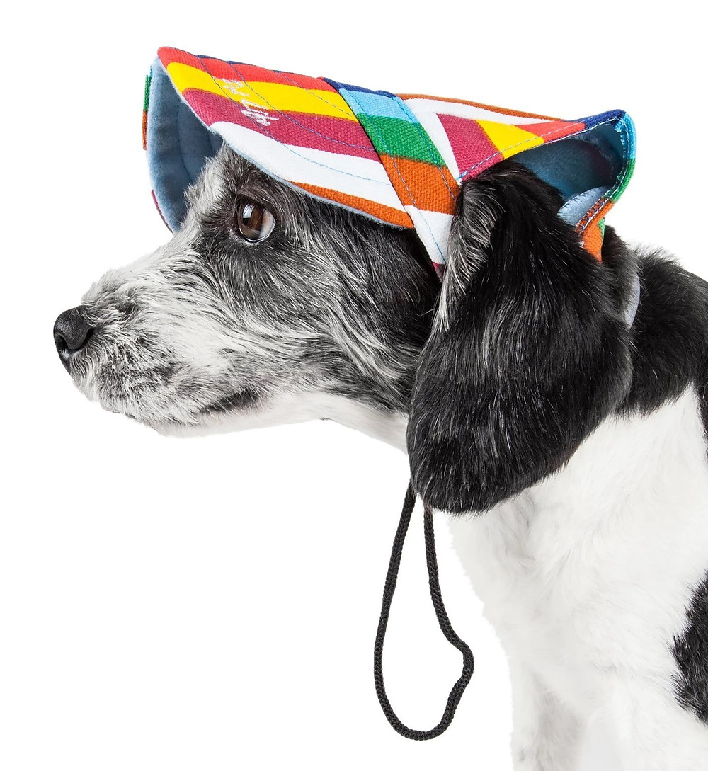Pet Life Colorful Dog Hat