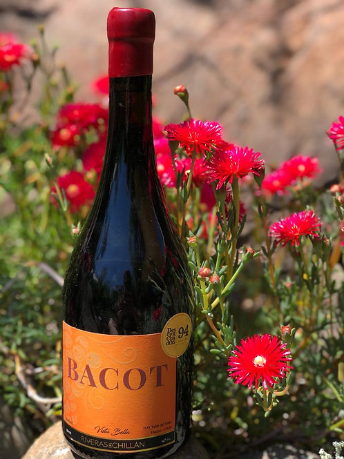Riveras del Chillán | Bacot | Malbec