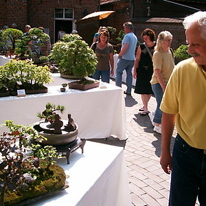 Bonsaiausstellung BIN in Leer