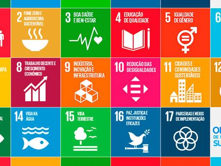 A escola e os ODS