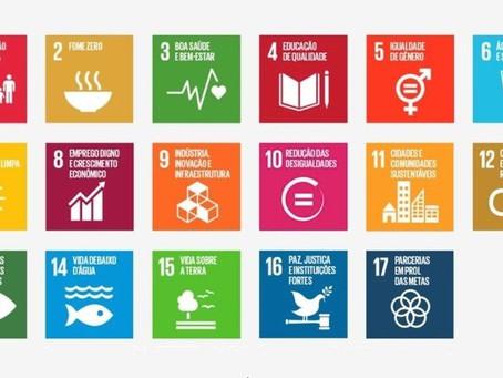 Objetivos de Desenvolvimento Sustentável e Educação