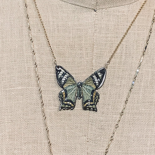 baby butterflies/moths