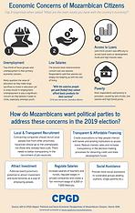 Mozambican Voters' Economic Concerns