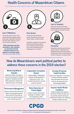 Mozambican Voters' Health Concerns