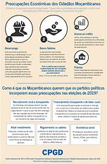 Preocupações Económicas Cidadãos Moçambicanos