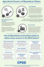 Mozambican Voters' Agricultural Concerns