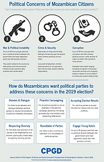 Mozambican Voters' Political Concerns