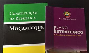 CPGD Mozambique Legislative Developent Research