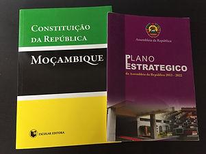 CPGD Mozambique Legislative Development Research