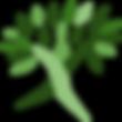 Cópia_de_Logo_Sítio_Recanto_Nativo_(