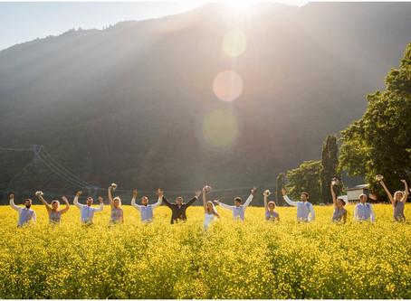 Year in Review - Weddings