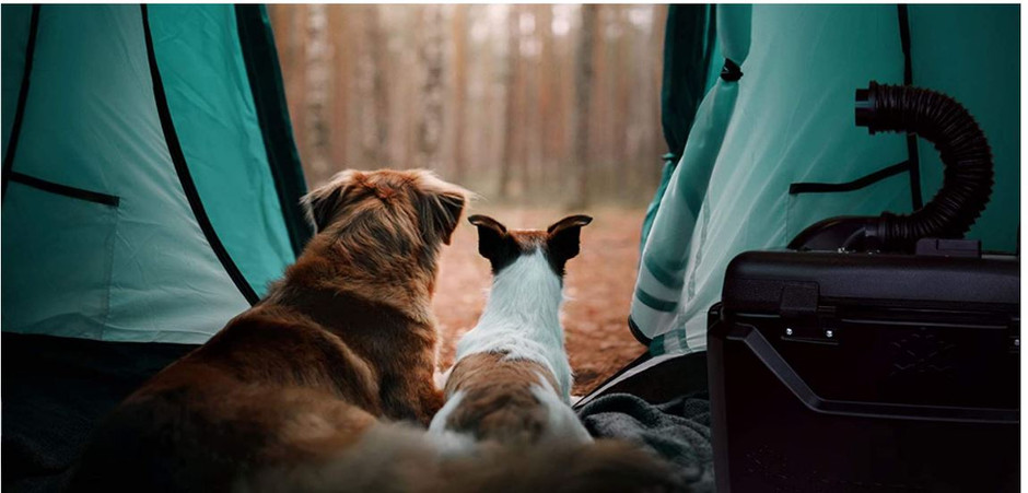 Can I Use a Portable Air Conditioner In Your Tent?