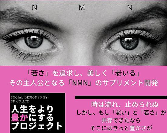 NMN (16).jpg