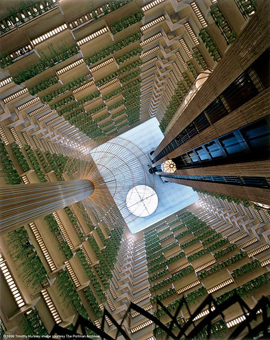 Hyatt Regency Atlanta, atrium, 1999. Sculpture 'Flora Raris' by Richard Lippold.