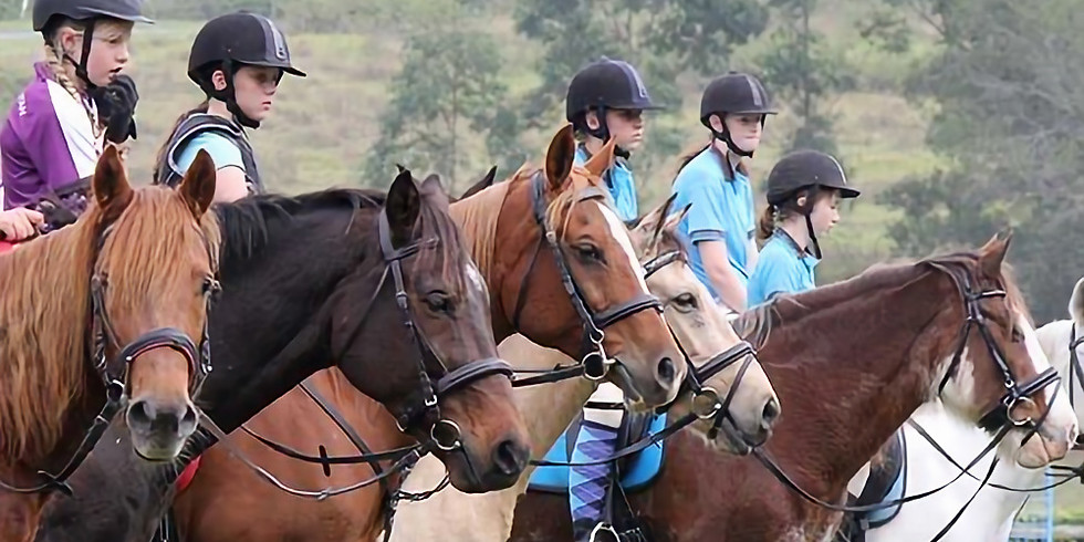Moggill Pony Club Clinic