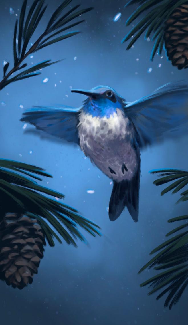 MDR_Companions_Hummingbird_01_ab.jpg