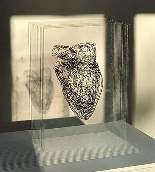 Ink drawing on glass sheets Based on MRI scans undertaken at the Visible Heart Laboratory, University of Minnesota, US, by Professor Paul Iaizzo and his team Edition of 4  Edition 1 currently on show at The Royal College of Physicians' 500th anniversary exhibition  'Ceaseless Motion: William Harvey's Experiments in Circulation'