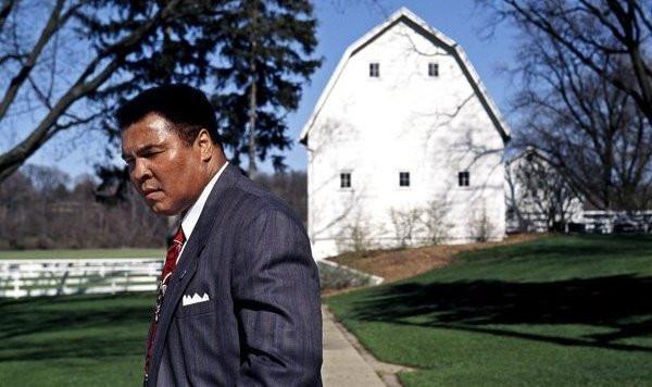 Muhammad Ali Berrien Springs