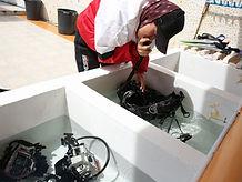 ダイビング器材の洗い