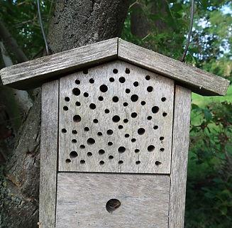 WEB Insektenhotel2.JPG