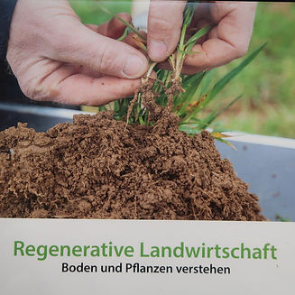 WEB regenerative LW.JPG
