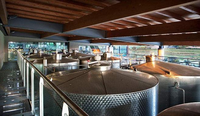 Vigne surrau, winery sardinia, wine tour sardinia, wine and food tasting sardinia, wine tours italy, excursions Olbia, excursions Porto cervo