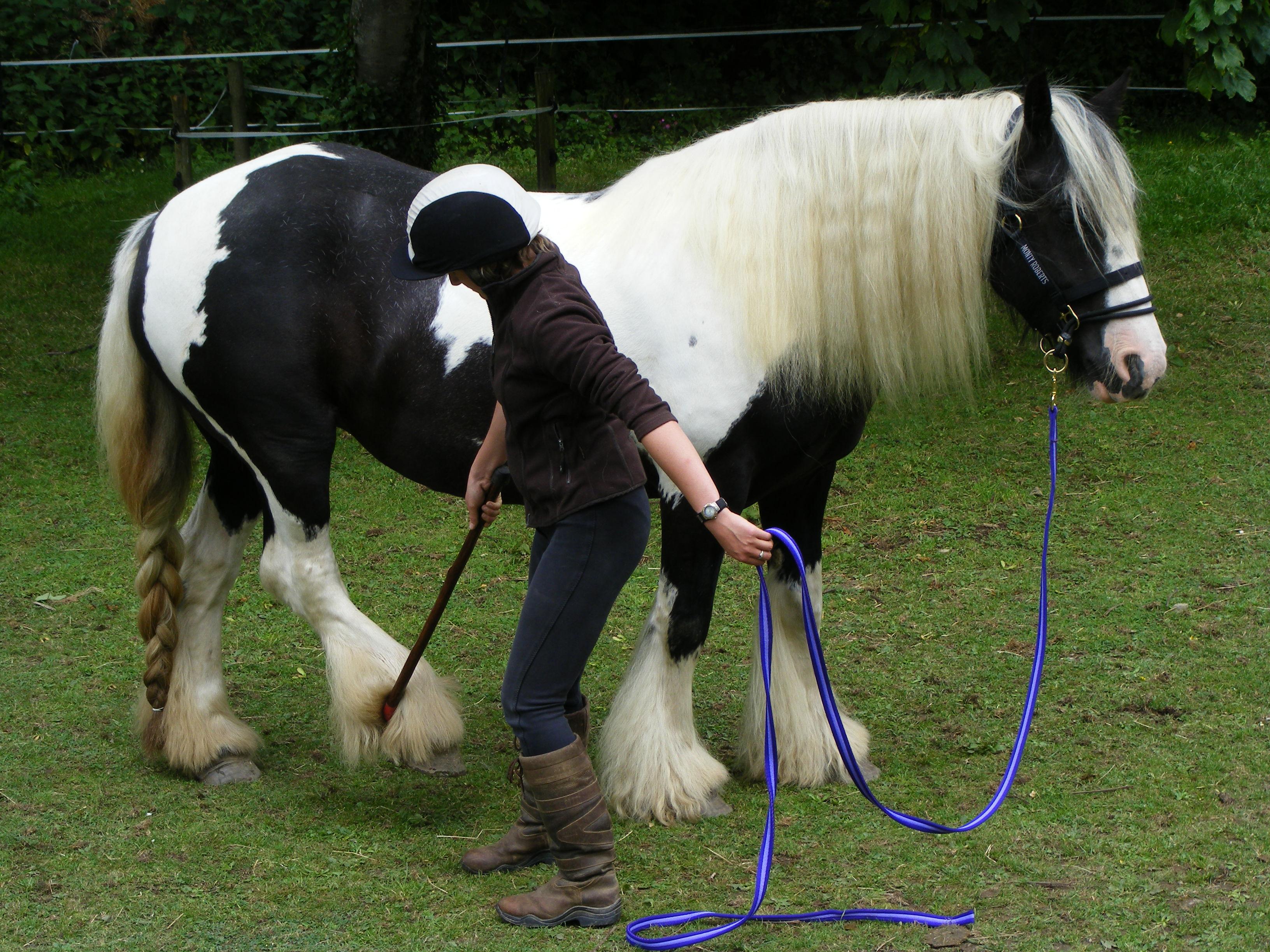 Leanne Roger - Leg Handling