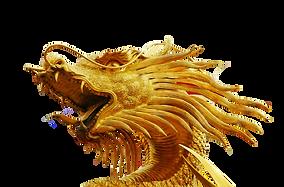 dragon sophia code sophia circle life mastery journeys lorea elia