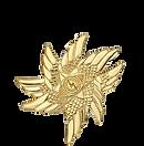 seraphim sophia dragon tribe sophia code sophia circle journey pendant logo