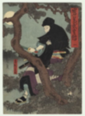 ninja2.jpg